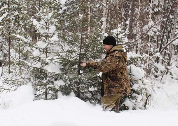 """В Иркутской области проводят операцию """"Ель"""""""